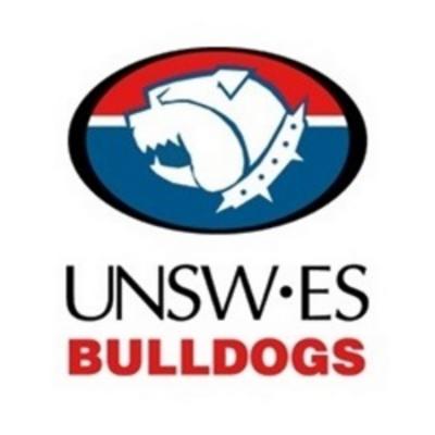 UNSW-ES Logo
